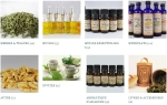 Herbes aromatiques, huiles essentielles et hydrolats